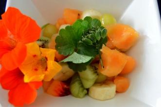 Salade de fruits au sirop de berce commune